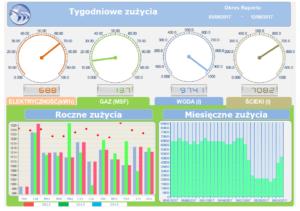 Dream_Report_raport_tygotniowego_zuzycia_mediow